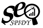 SEOSPIDY Web Solution